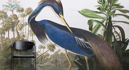 پوستر دیواری پرندگان مدل GH051 از گالری ه