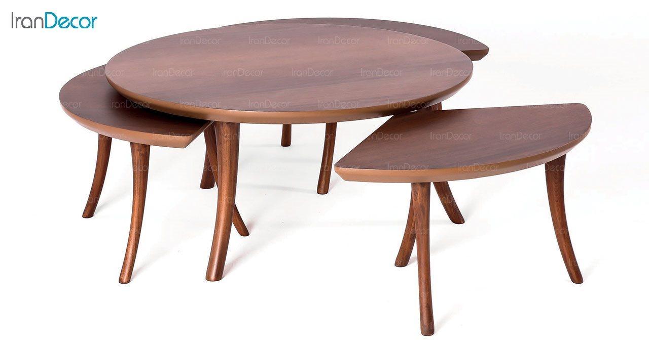 میز جلو مبلی گرد چوبی مدل فلور