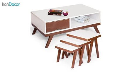 سرویس میز جلو مبلی مدل پانیذ از میشا چوب