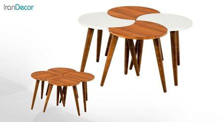 سرویس میز جلو مبلی مدل پازل از میشا چوب