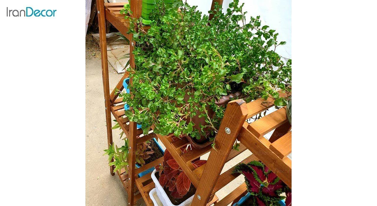 تصویر استند گل و گیاه چوبی مدل W63